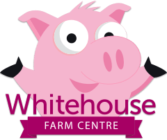 Reception visit to Whitehouse Farm